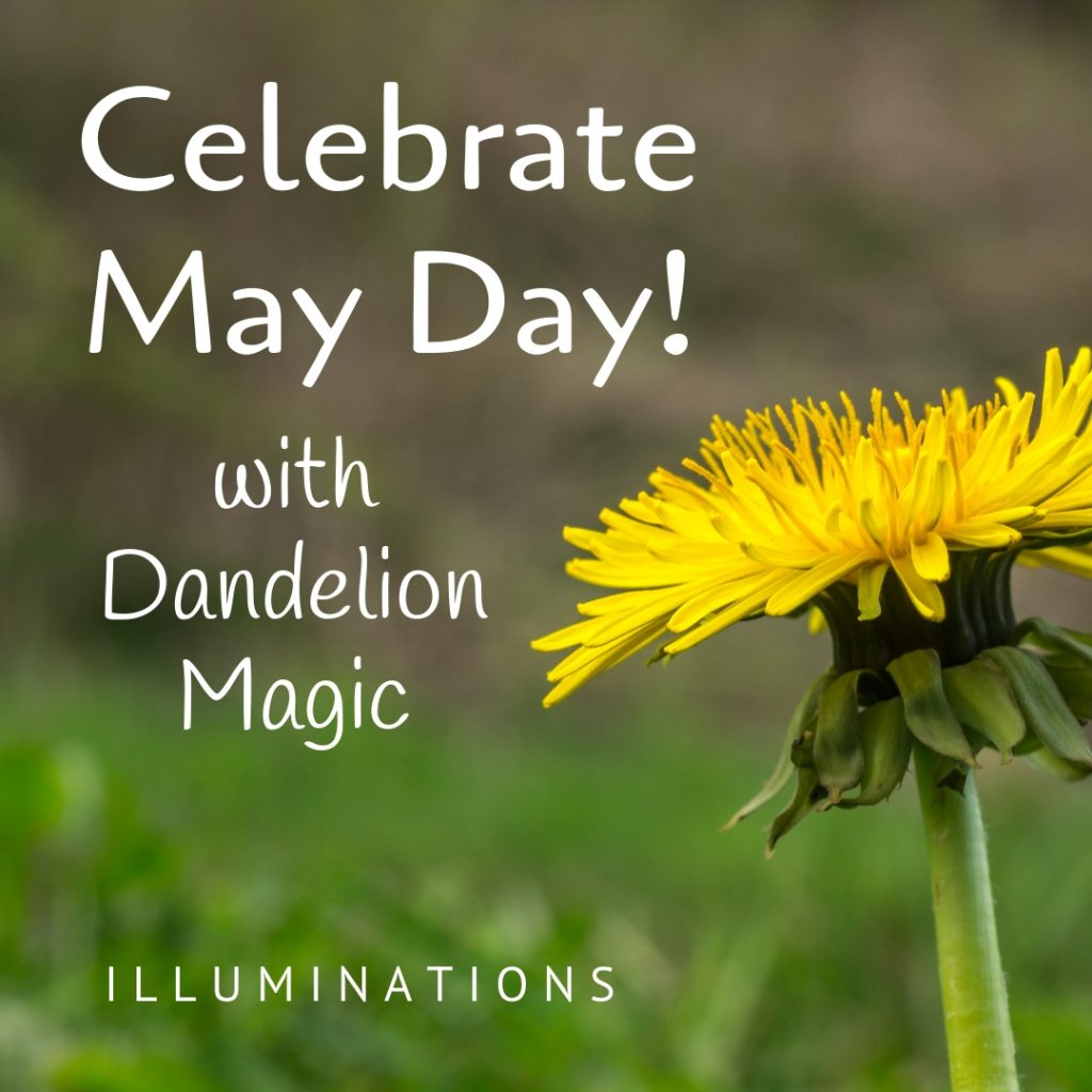 Dandelion Magic for May Day